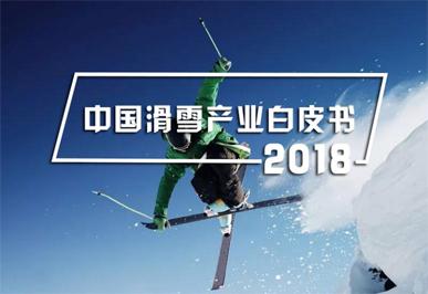 2018 中国亿博平台代理产业白皮书
